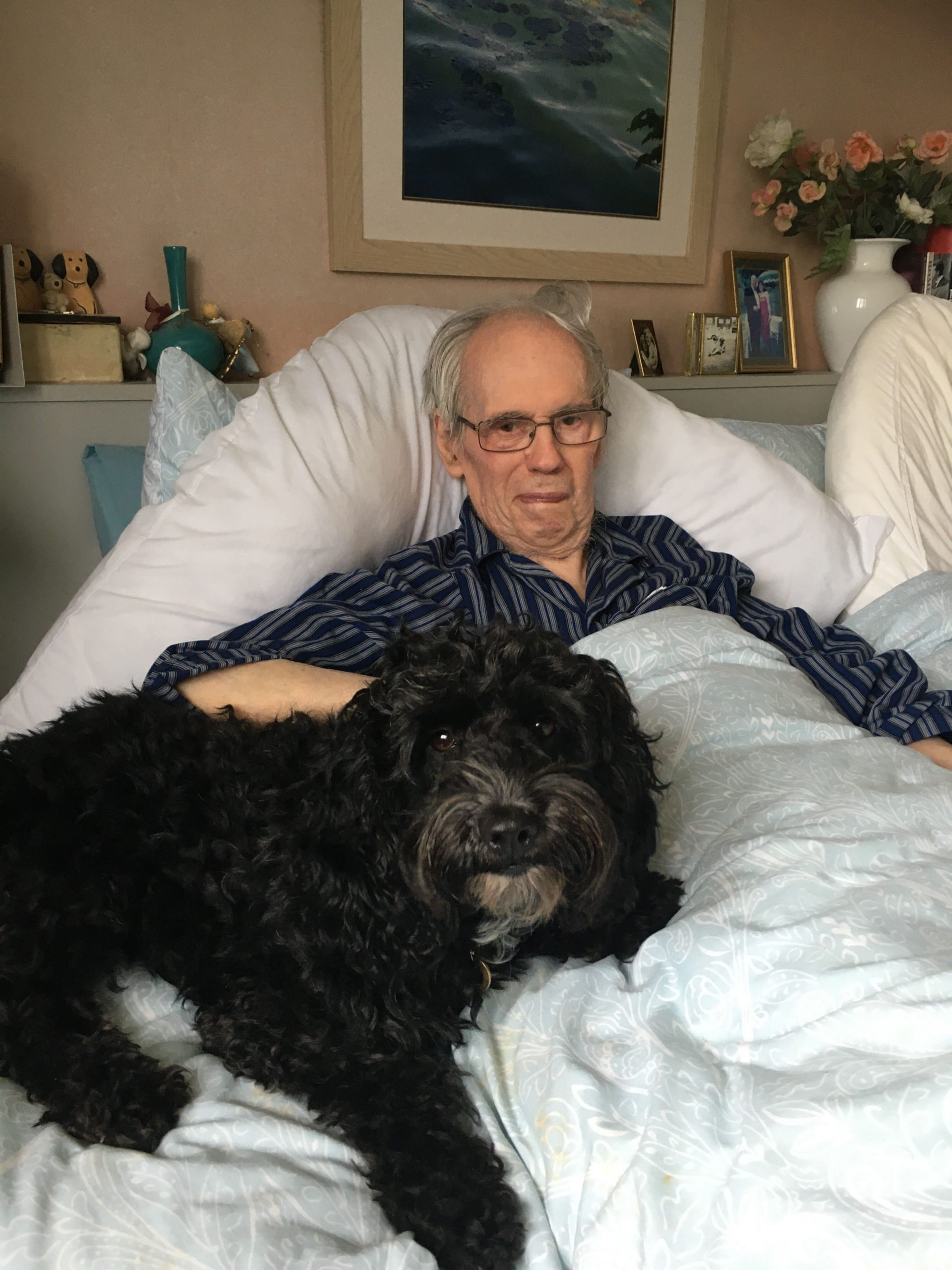 Pets and the Elderly: The Benefits of a Furry Friend
